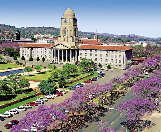 Regierungssitz und Jacaranda Allee in Pretoria