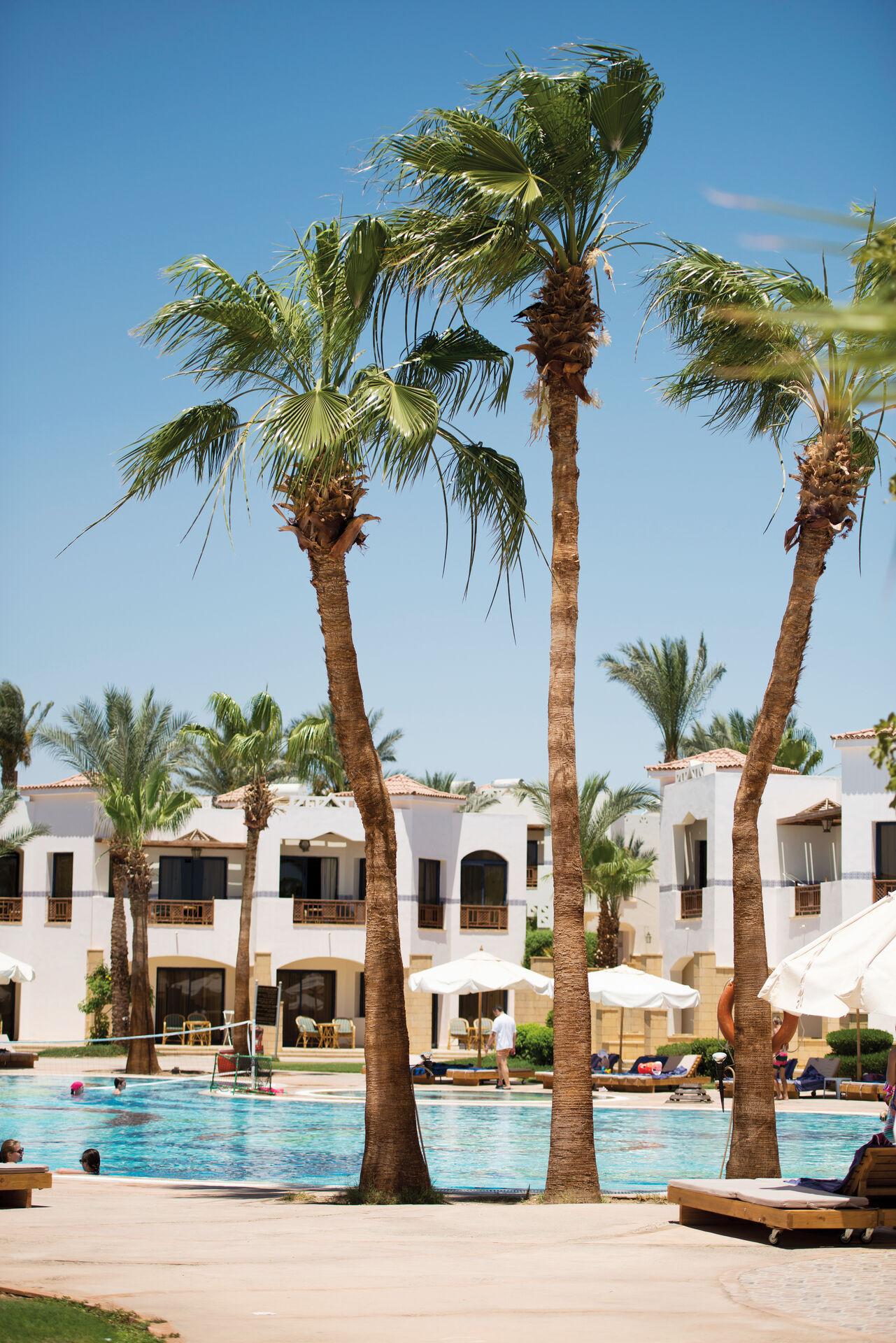 Hotel Otium Amphoras