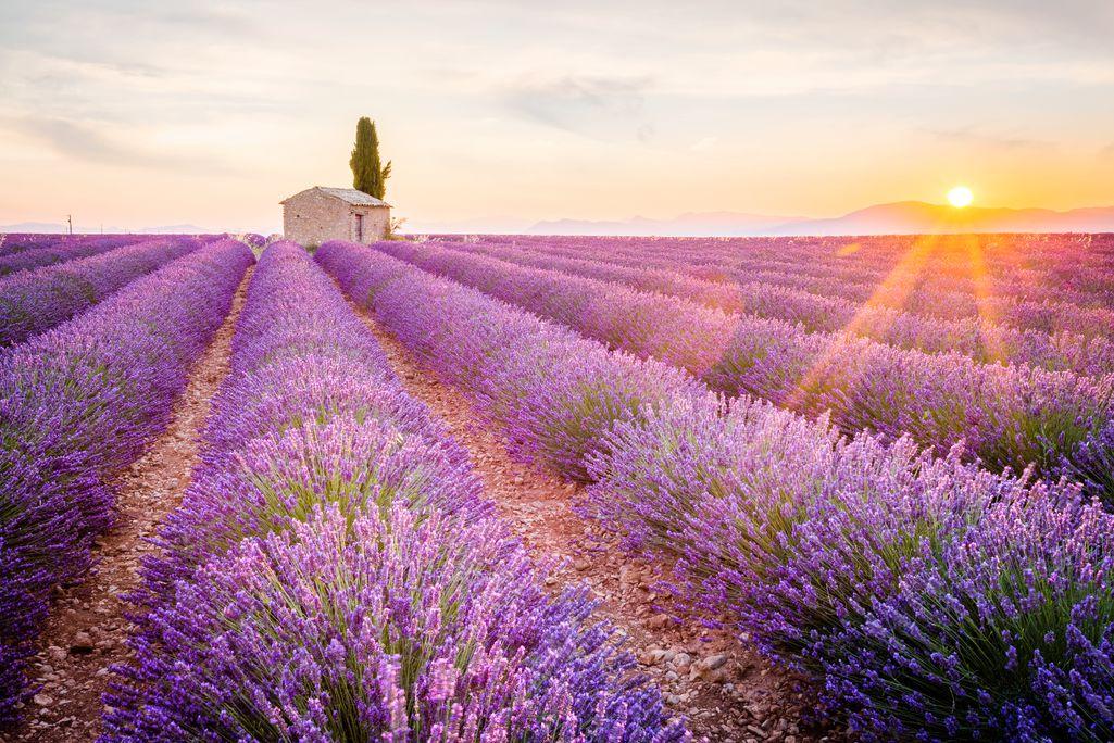 Rundreise Côte d`Azur und Provence - © Getty Images