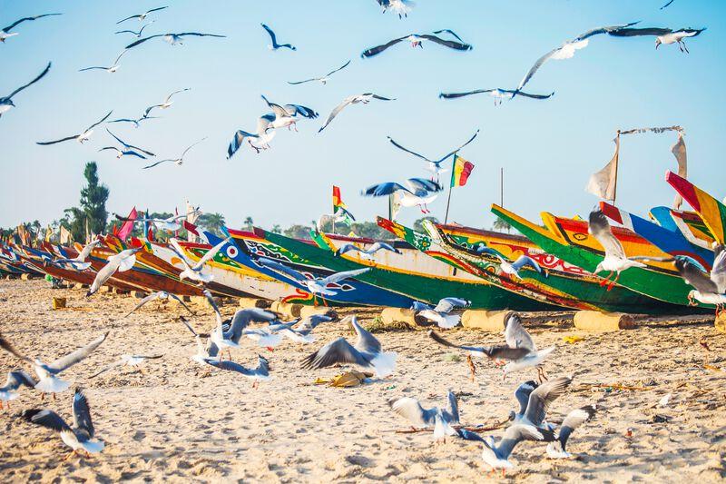 Highlights Westafrika © Peeter Viisimaa