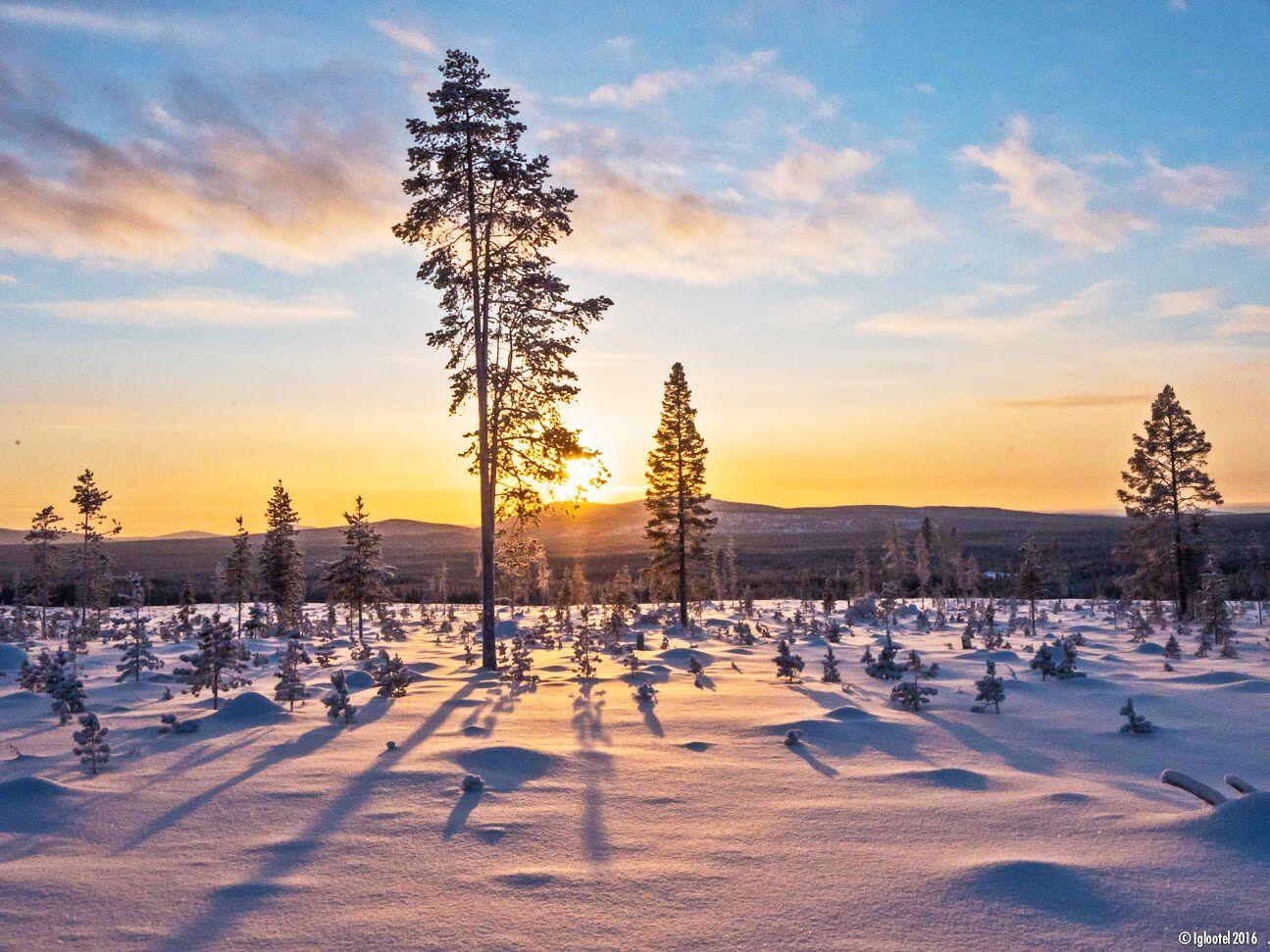 Bus-Rundreise zum Nordkap und Lappland
