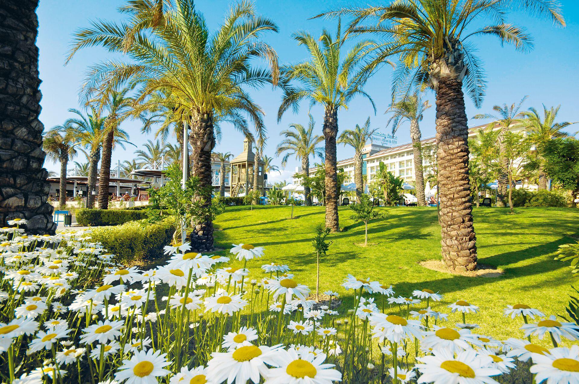 Turquie - Side - Hôtel Sunis Kumköy Beach Resort & Spa 5*